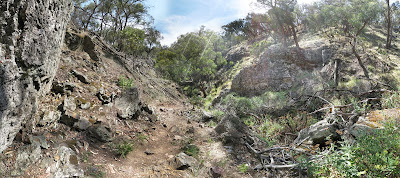 Ironbark Track (on the way back to the car) - Werribee Gorge State Park