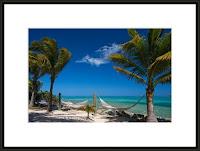 Breezy Island Life (BVI)