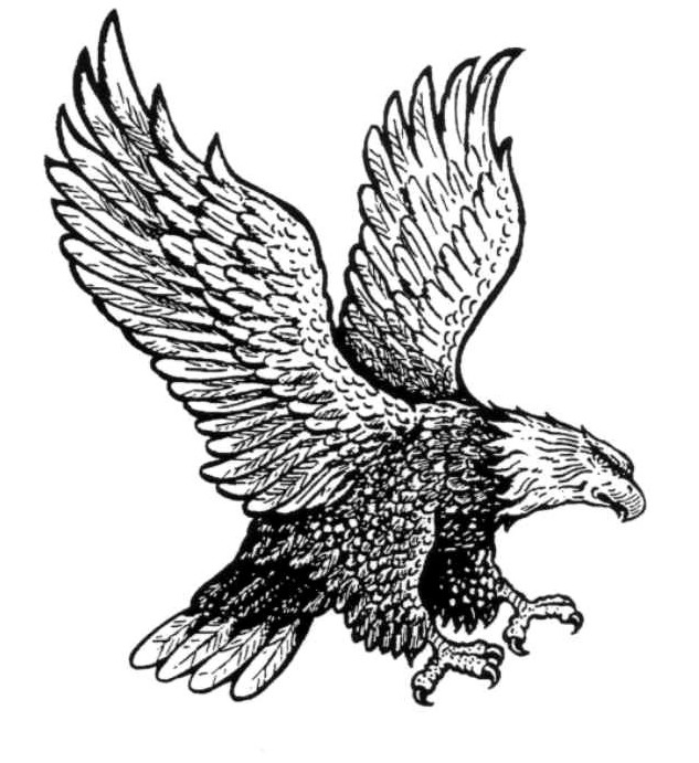 Student Of Eagle Country