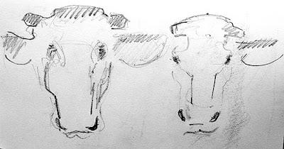 Cows 6 graphite A5