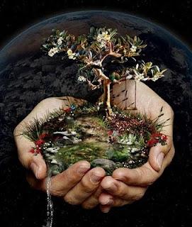 ecologia+planeta tierra