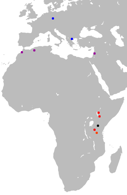 Leherensuge Late Human Evolution Maps