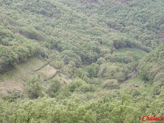vegetación en el Valle del Jerte