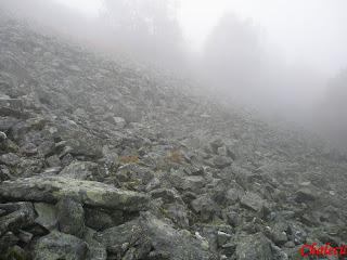 niebla en la sierra
