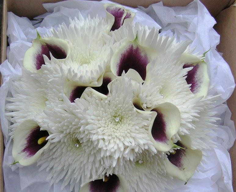 wedding flowers blog catherine 39 s winter wedding flowers ivory and purple. Black Bedroom Furniture Sets. Home Design Ideas