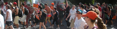 Salmon swimming upstream at Bay to Breakers in San Francisco