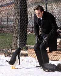 Mr Popper's Penguins Movie