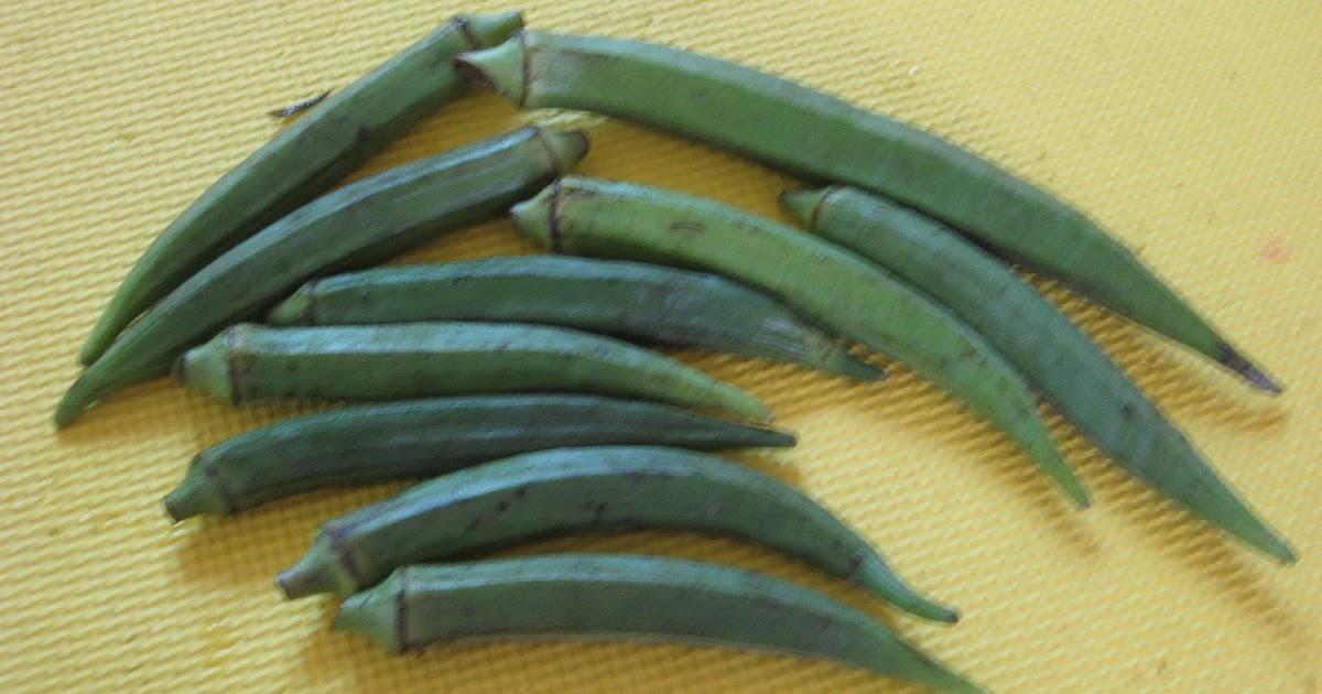 Laman Informasi Prasekolah: Tema: Sayur-sayuran