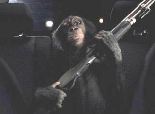 Killer Space Monkeys of Doom: It's that time of the week.
