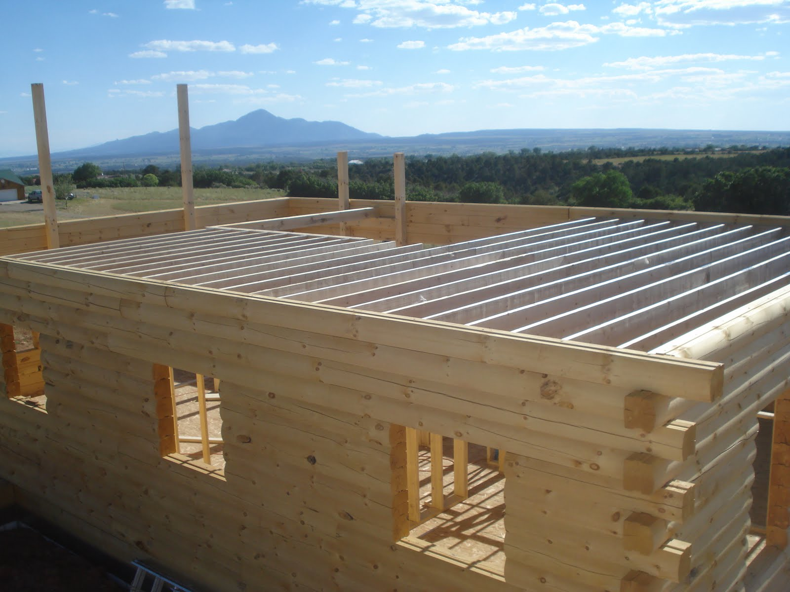 Dolores House Second Floor Joists
