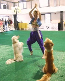 Dancing with the Dogs: Musical Canine Freestyle - Pets Cute