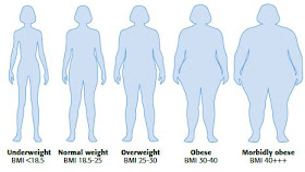 Science Knowledge Body Mass Index