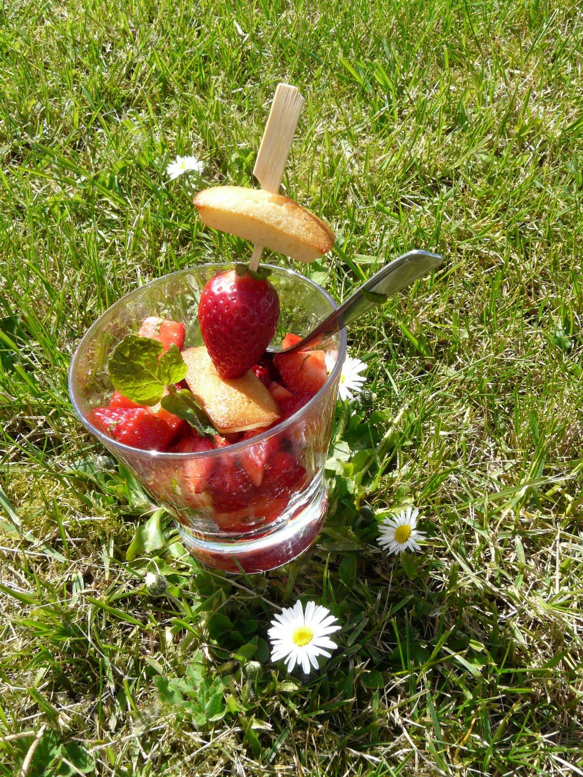 100 gourmande du soleil des petits oiseaux des fraises de la menthe - Bienfait des fraises ...