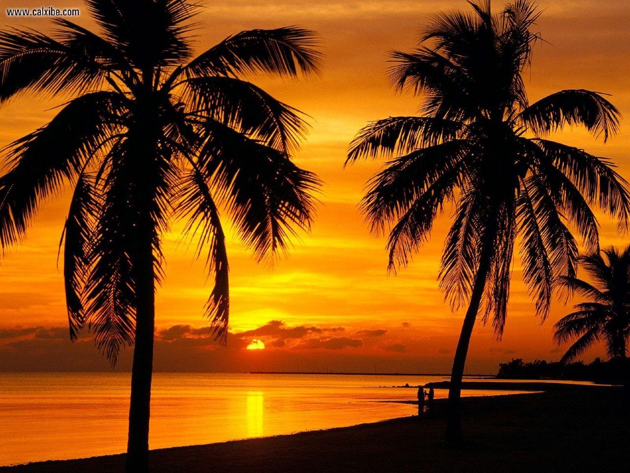 Miami by me coucher de soleil - Wallpaper florida keys ...