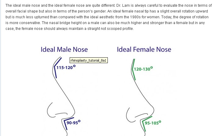 Nose Revision Surgery And Surgeons: The Nose Tip