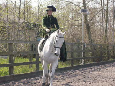 First side saddle costume class 2010