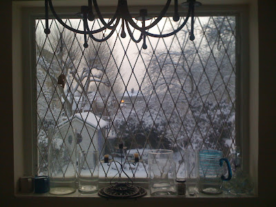 The snowy view from my dining room