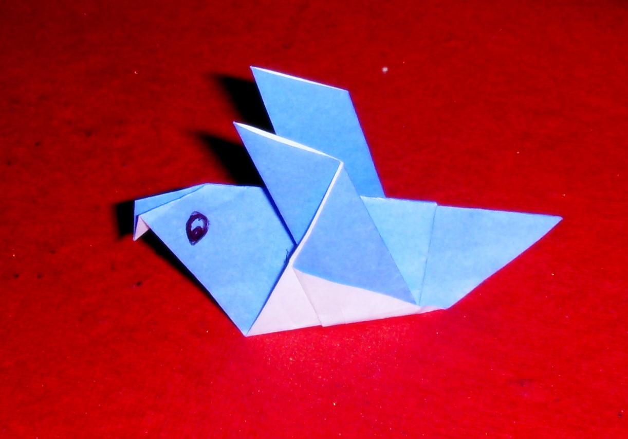 origami origami pigeon