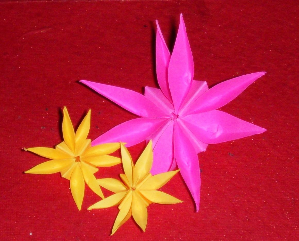 Origami origami 8 petal flower origami 8 petal flower mightylinksfo