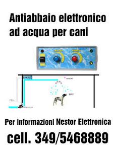 Antiabbaio Ad Acqua.Nestor Elettronica 349 5468889 Antiabbaio Ad Acqua Per Cani
