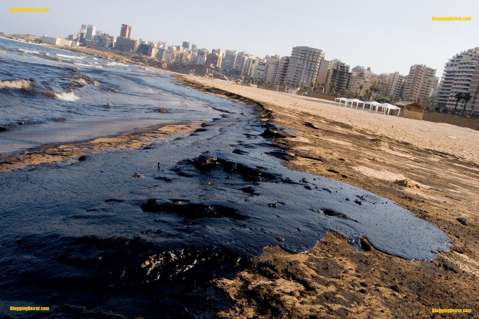 Blogg, blogg, blogg ! (:: BAD oil spill. Animals In Danger