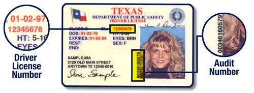 Lost texas drivers license need audit number | ЕНТ, ПГК
