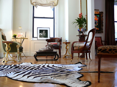 Patricia Gray Interior Design Blog Zebra Carpets
