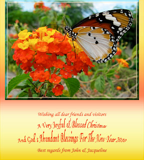 Greeting card for Christmas 2009 and New Year 2010