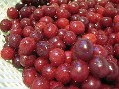 A close up photo of cherries.