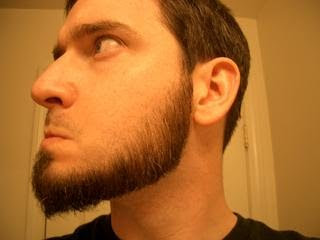 Chin Curtain Beard Home Design Ideas And Pictures