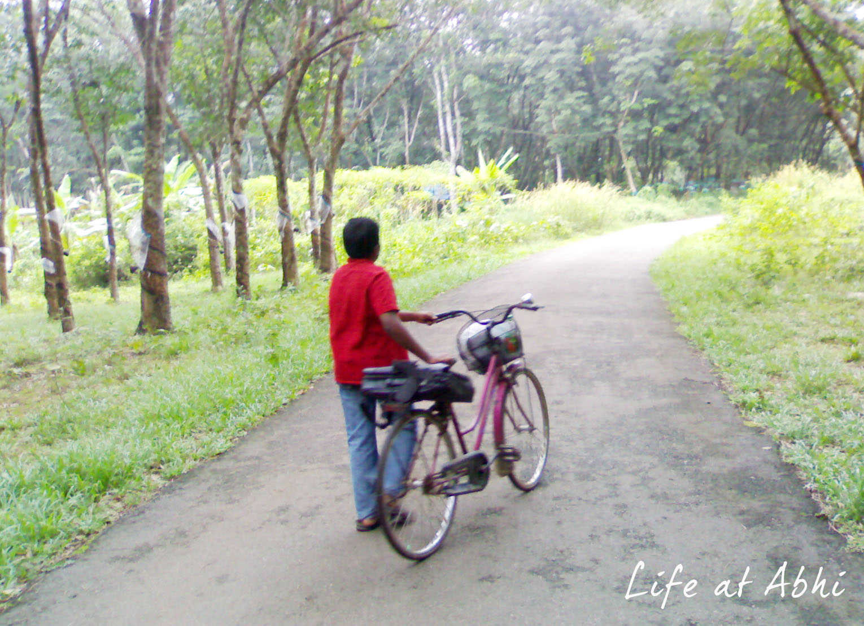 a sunday that started walking through payyanalloor