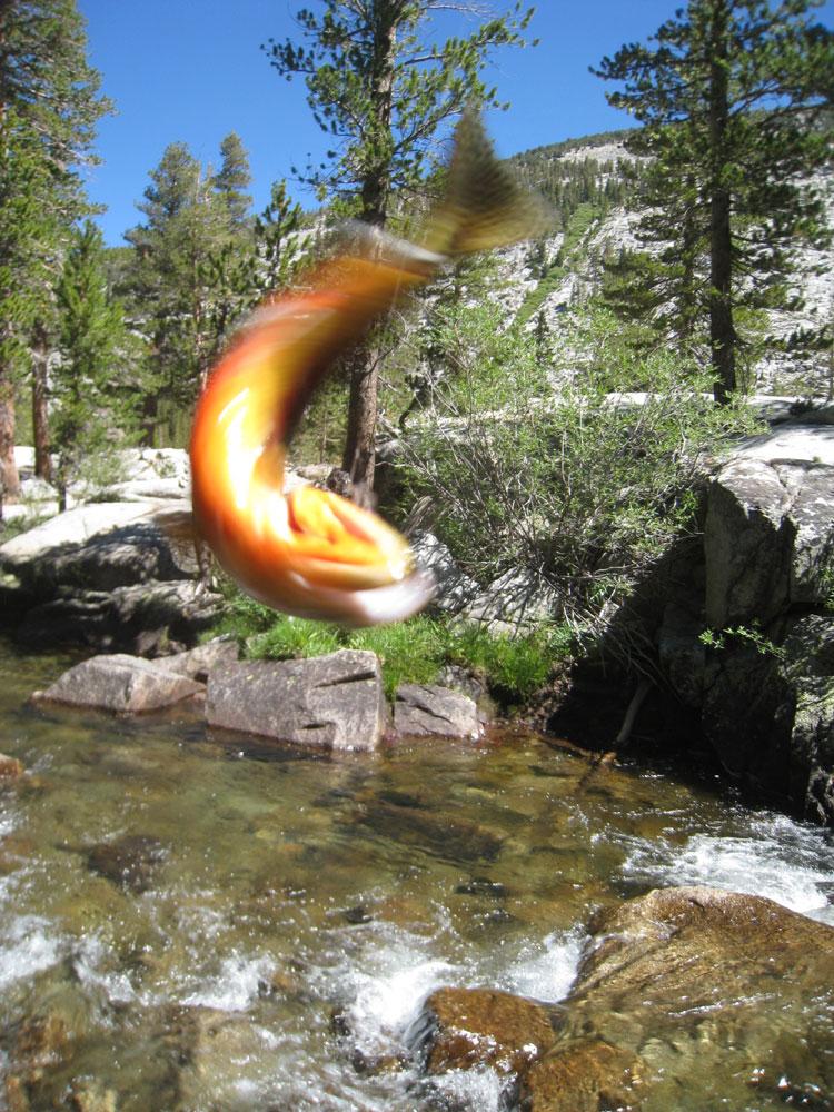 Jmt 2010 Vermillion Valley Resort To Muir Trail Ranch