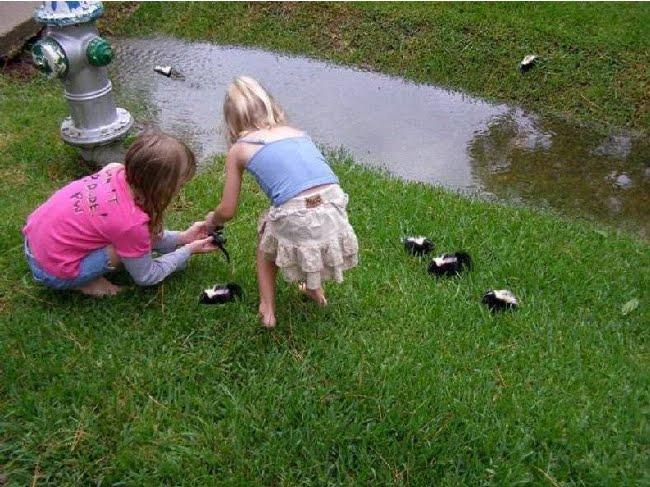 little girls with skunks