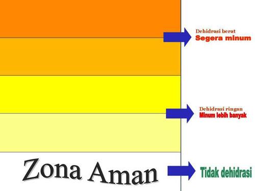 https://i2.wp.com/4.bp.blogspot.com/_zOMSlWh4gL8/TEw8P1sg7WI/AAAAAAAAAso/EpGPfXfNL8Q/urine-chart-1.jpg