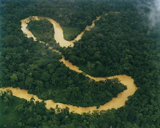Nopy Blogs Sungai Amazon Terbentuk Karena Ular Raksasa Amerika Selatan