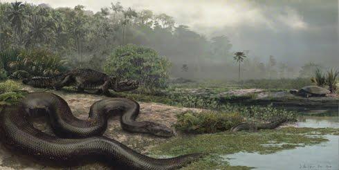 Berbagi Alur Amazon Terbentuk Karena Anaconda Raksasa