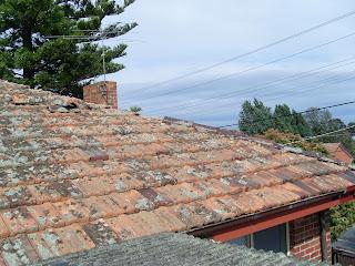 Waynes Home Renos Diy Terra Cotta Roof Tiled Roof Repairs