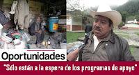 Resultado de imagen para  programa oportunidades gobierno de veracruz
