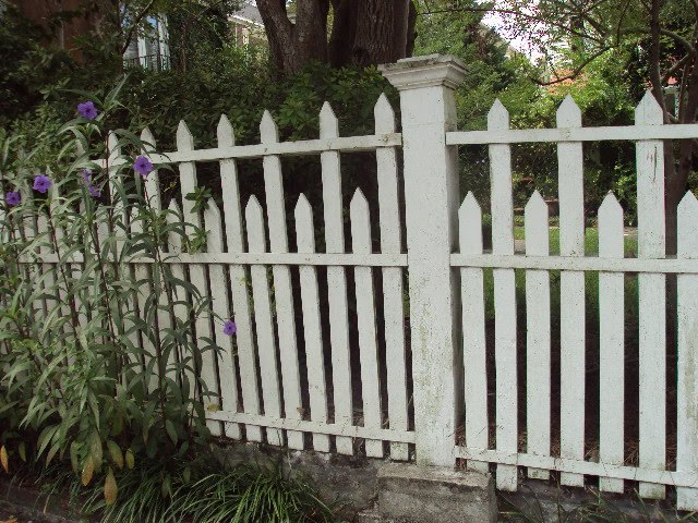 Antique ART Garden: Original Old Wood Picket FENCES