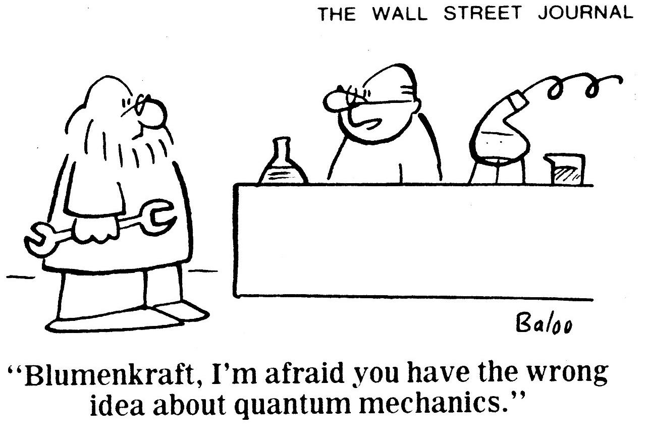 Quantum Mechanics How Can It Be Like That