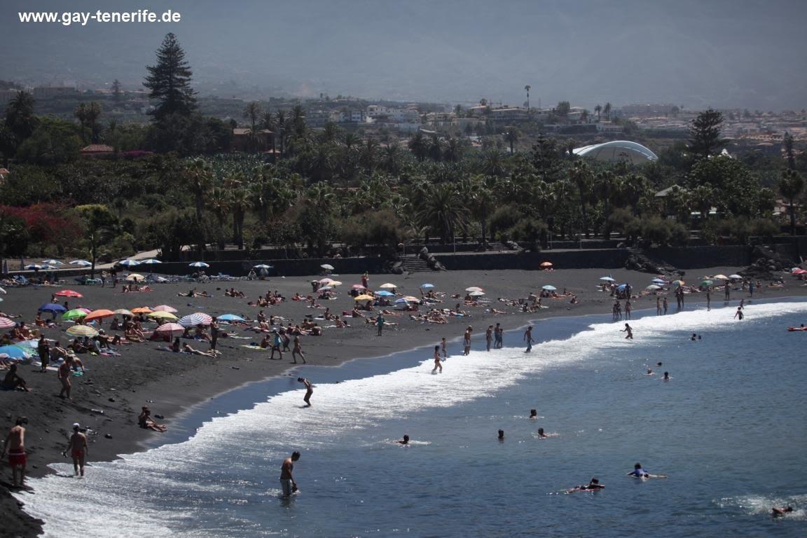 Gay -Tenerife.de: Gay Tenerife / Teneriffa - Playa Jardin