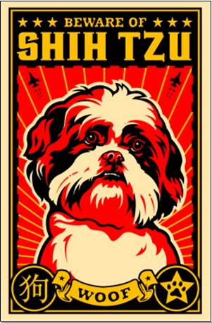 Shih tzu poster
