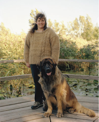 sweaters made from dog hair