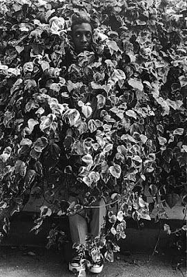 Bill Cosby photo taken by Dennis Hopper