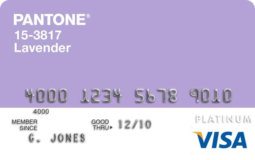 Travel Rewards Visa Credit Card Applicatipn