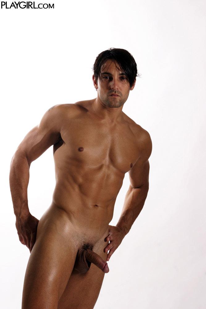 torito gay desnudos