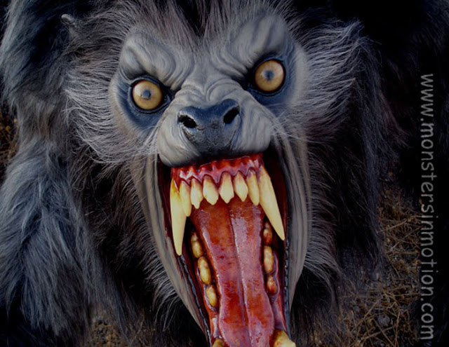 La Biblioteca De V: Descarga Libros De Rol De Hombre Lobo