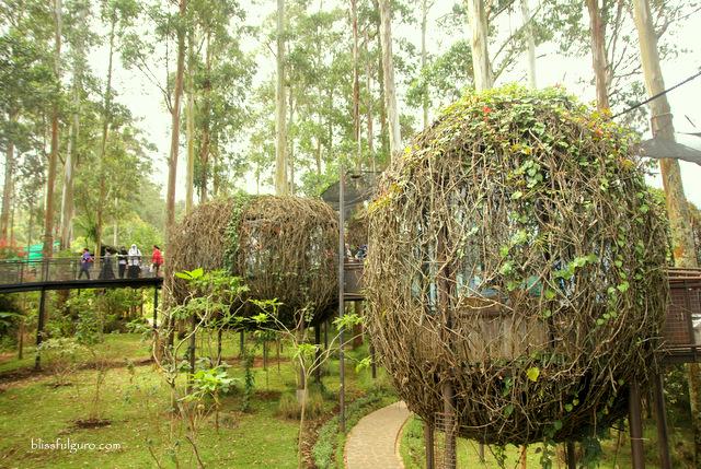 Bird Nest Dusun Bambu Park Bandung