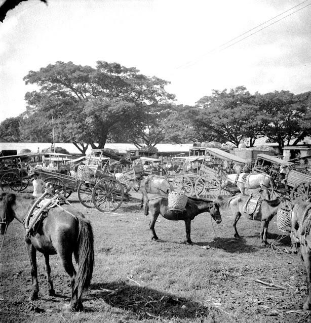 Tanauan, Batangas