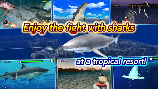 Wild Shark Fishing Hack Full Tiền Cho Android